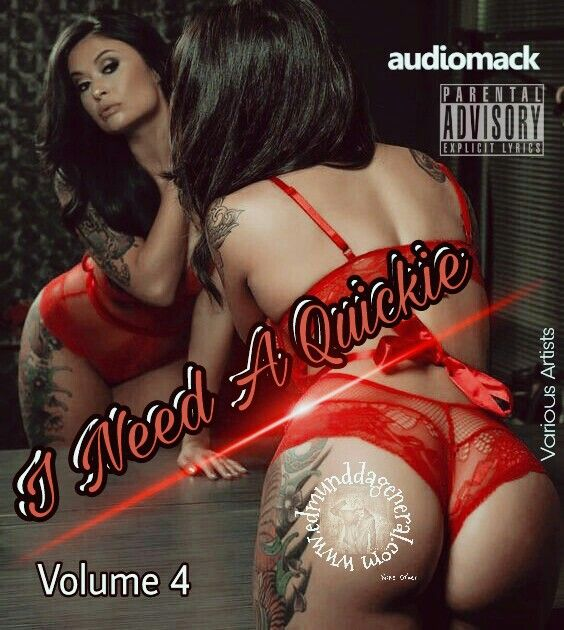 i-need-a-quickie-volume-4-front-cover