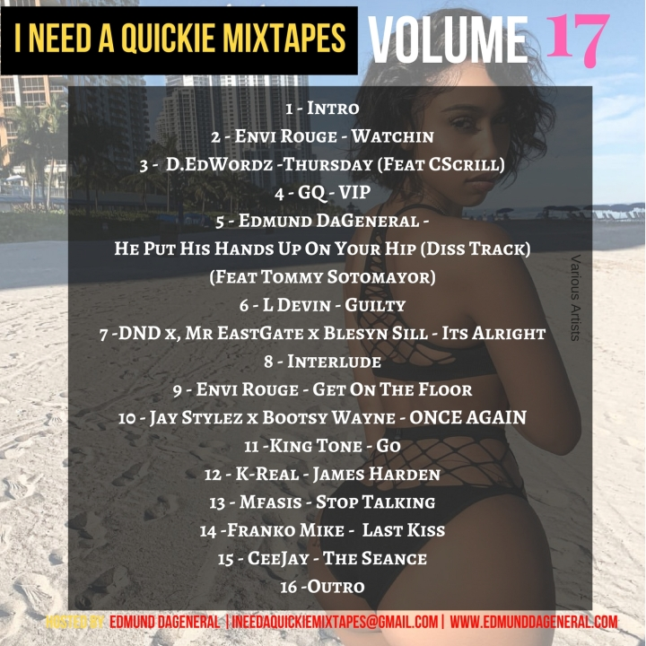 I Need A Quickie - Volume 17 Back Cover